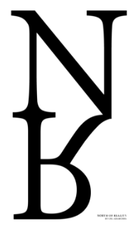 north-of-reality-logo